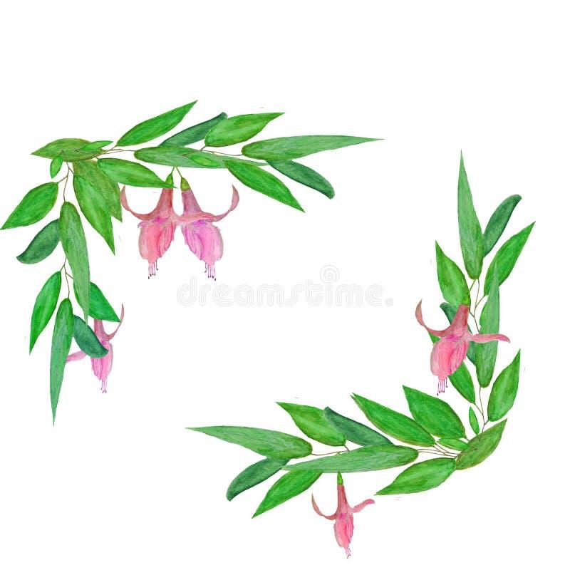 Πράσινα φύλλα απεικόνισης Watercolor με τα ρόδινα λουλούδια ελεύθερη απεικόνιση δικαιώματος