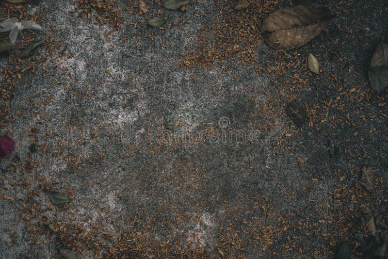 Πράσινα φύλλα και συγκεκριμένο υπόβαθρο πατωμάτων στοκ φωτογραφίες με δικαίωμα ελεύθερης χρήσης