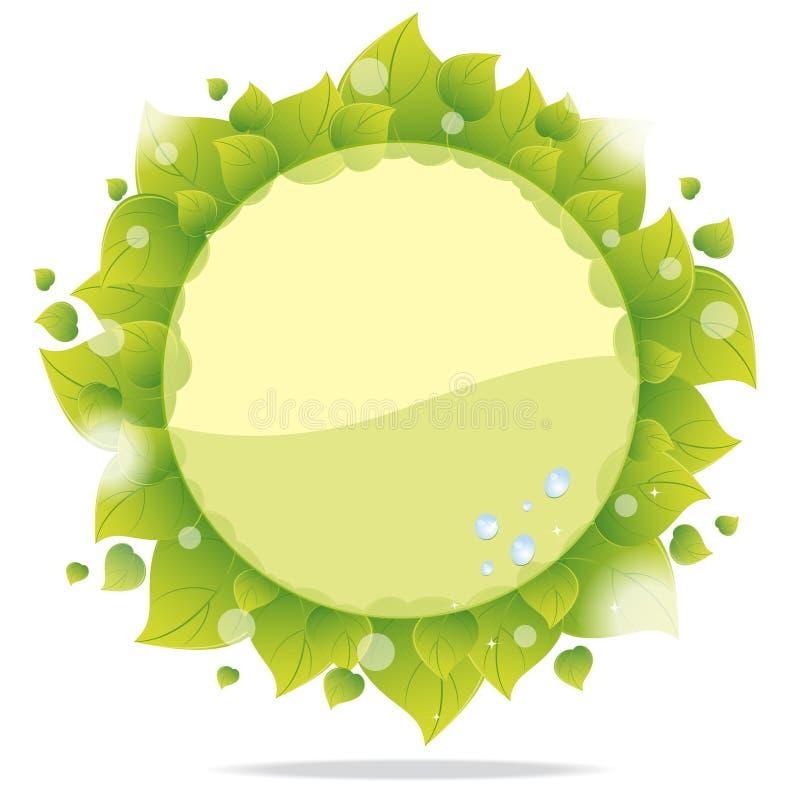 πράσινα φύλλα eco καρτών διανυσματική απεικόνιση