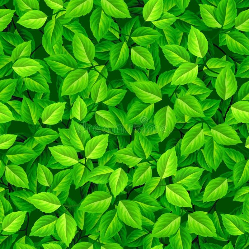 πράσινα φύλλα ανασκόπησης ά& επίσης corel σύρετε το διάνυσμα απεικόνισης ελεύθερη απεικόνιση δικαιώματος