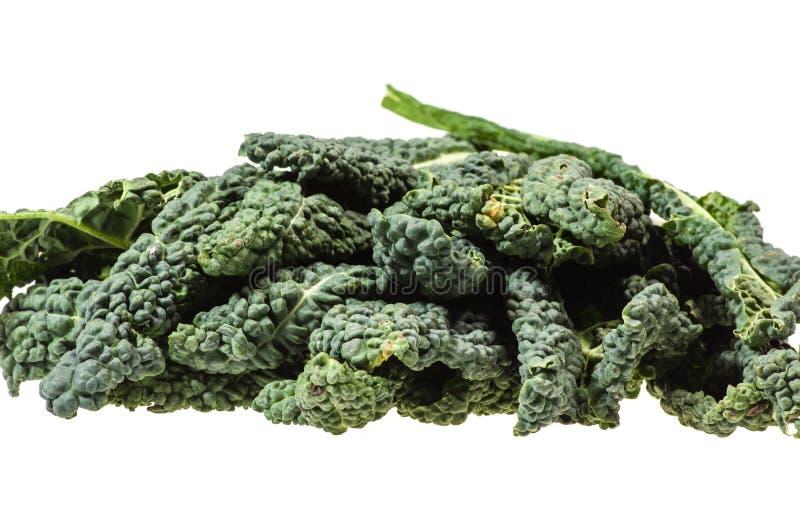 Πράσινα φύλλα κατσαρού λάχανου που απομονώνονται στο λευκό στοκ φωτογραφία με δικαίωμα ελεύθερης χρήσης