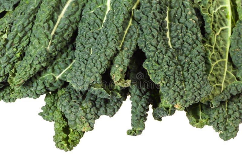 Πράσινα φύλλα κατσαρού λάχανου που απομονώνονται στο λευκό στοκ εικόνες