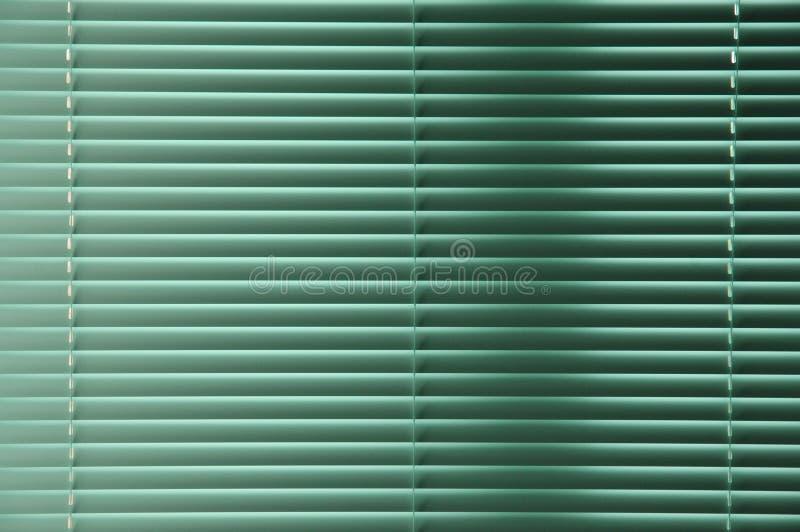πράσινα windowblinds στοκ εικόνες