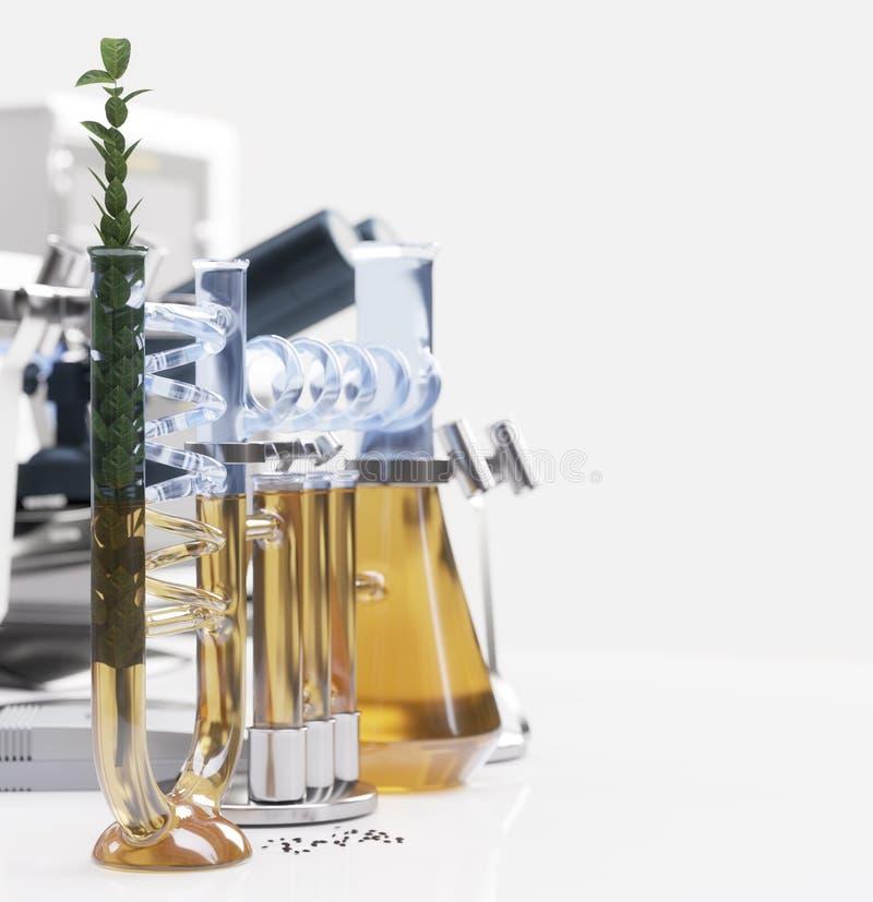 Πράσινες εγκαταστάσεις στη χημική έννοια εργαστηριακών επιστήμης και τεχνολογίας στοκ φωτογραφίες με δικαίωμα ελεύθερης χρήσης