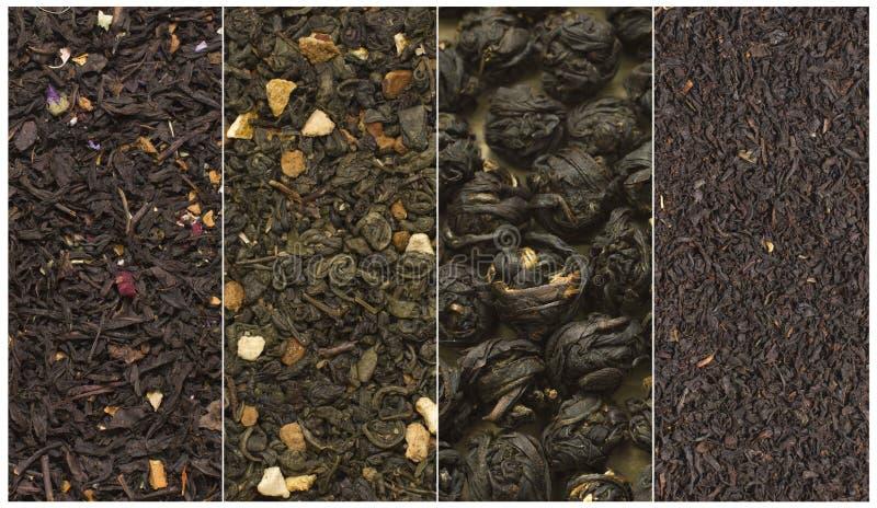 Πράσινες μαύρες σφαίρες ποικιλιών τσαγιού και floral κολάζ στοκ φωτογραφία