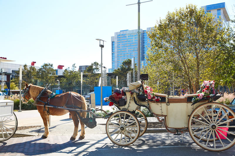 Πράσινες μεταφορές αλόγων πάρκων ανακαλύψεων του Χιούστον στοκ εικόνα