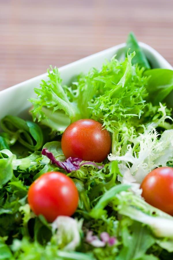 πράσινες ντομάτες σαλάτας στοκ εικόνες