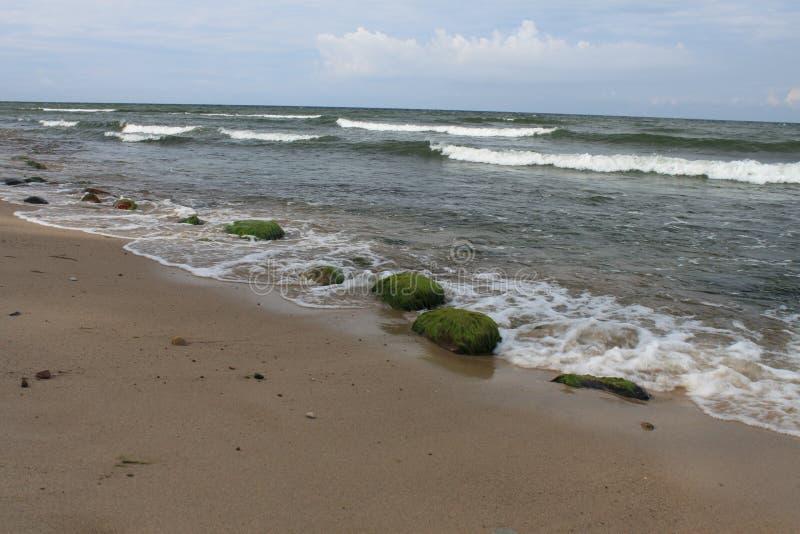Πράσινες πέτρες στην παραλία, η θάλασσα της Βαλτικής, Hel, Πολωνία στοκ εικόνες