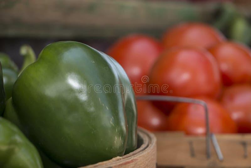 Πράσινες πιπέρια και ντομάτες στοκ εικόνες
