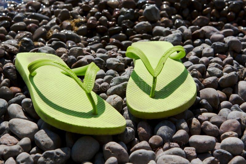 Πράσινες σαγιονάρες στην παραλία χαλικιών στοκ εικόνες