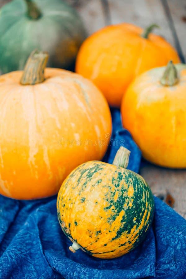 Πράσινης και πορτοκαλιάς κολοκύθα συγκομιδών φθινοπώρου, στοκ φωτογραφία με δικαίωμα ελεύθερης χρήσης