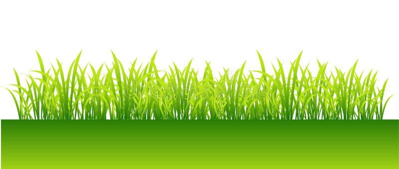 πράσινη άνοιξη χλόης σχεδίο& ελεύθερη απεικόνιση δικαιώματος