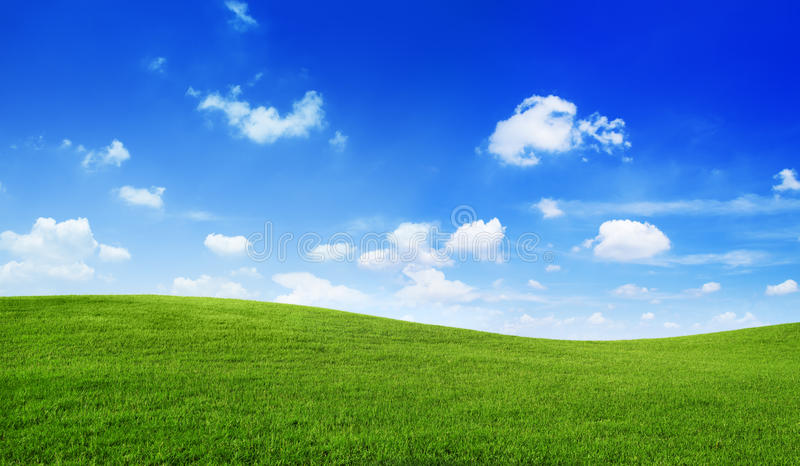 Πράσινη έννοια απείρου περιβάλλοντος μπλε ουρανού τομέων στοκ φωτογραφία με δικαίωμα ελεύθερης χρήσης