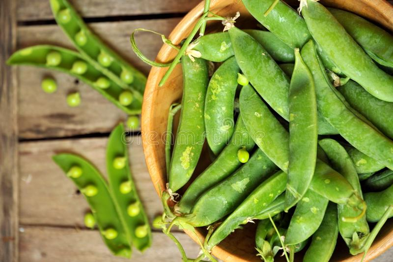 Πράσινη έννοια διατροφής φύλλων με τα φρέσκα αιφνιδιαστικά μπιζέλια στοκ εικόνα