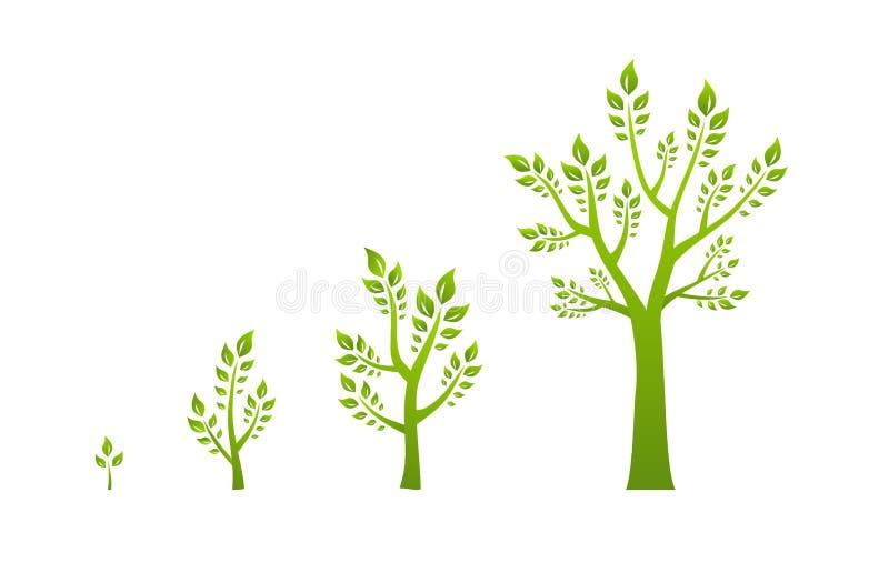 Πράσινη έννοια eco αύξησης δέντρων απεικόνιση αποθεμάτων