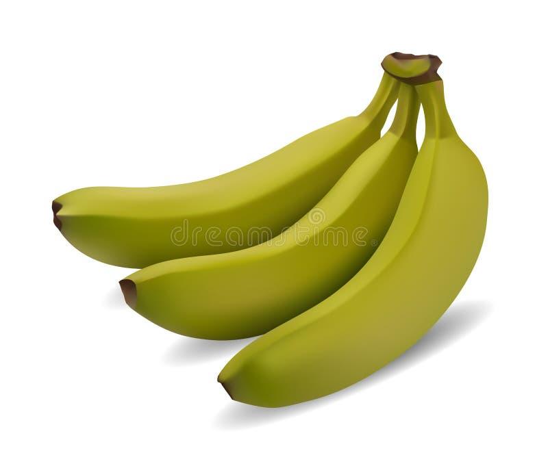 Πράσινη δέσμη μπανανών απεικόνιση αποθεμάτων
