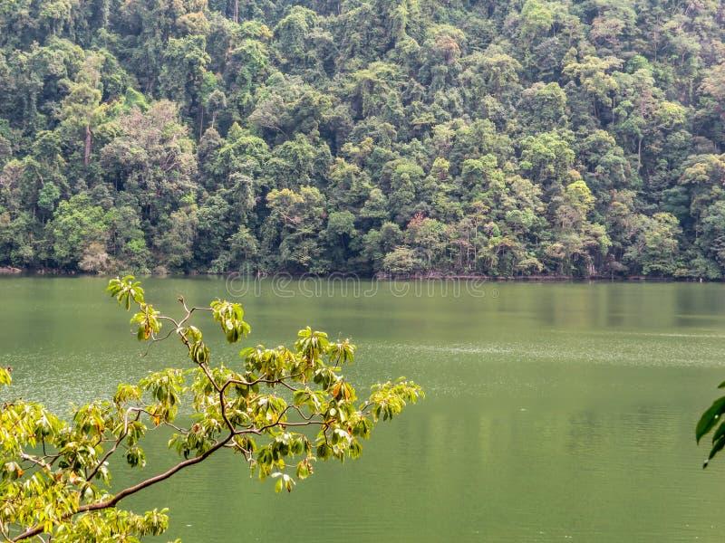 Πράσινη λίμνη σε Langkawi, Μαλαισία στοκ φωτογραφία
