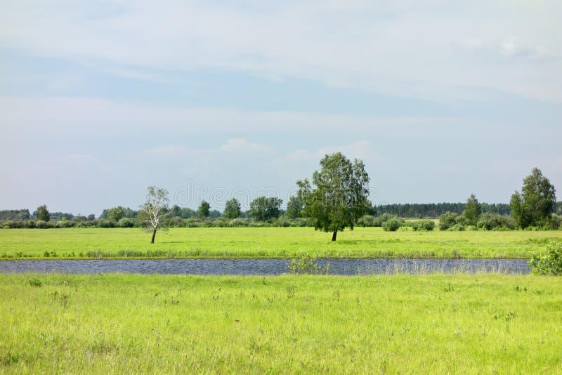Πράσινη ανασκόπηση πεδίων στοκ φωτογραφία με δικαίωμα ελεύθερης χρήσης