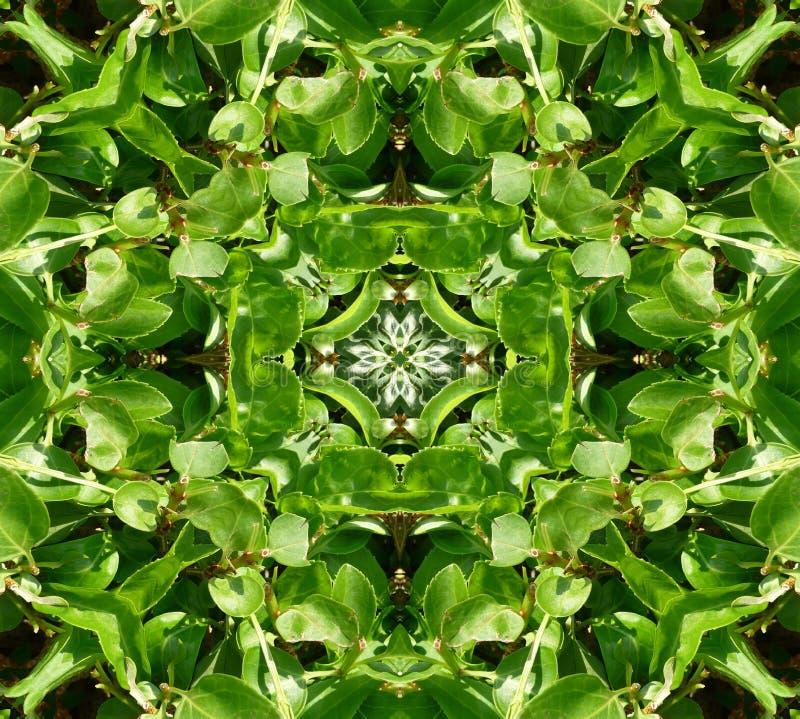 Πράσινη ανασκόπηση προτύπων κεραμιδιών φύλλων στοκ φωτογραφία με δικαίωμα ελεύθερης χρήσης