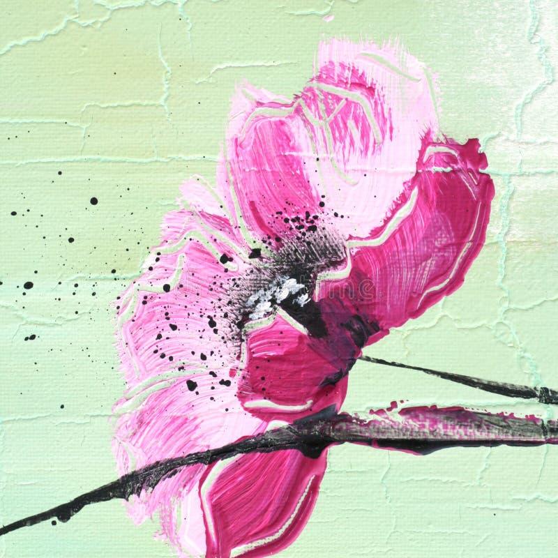 πράσινη ανοικτό ροζ παπαρούνα απεικόνιση αποθεμάτων