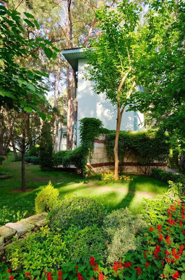 πράσινη αυλή στοκ εικόνες με δικαίωμα ελεύθερης χρήσης