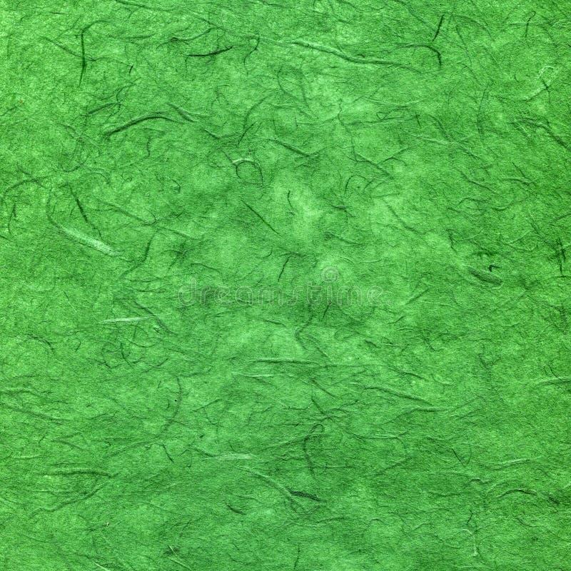 Πράσινη Βίβλος κατασκευ στοκ εικόνα
