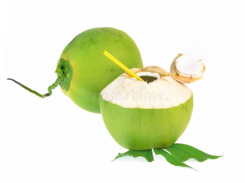 Πράσινη καρύδα που απομονώνεται στο άσπρο υπόβαθρο στοκ εικόνες