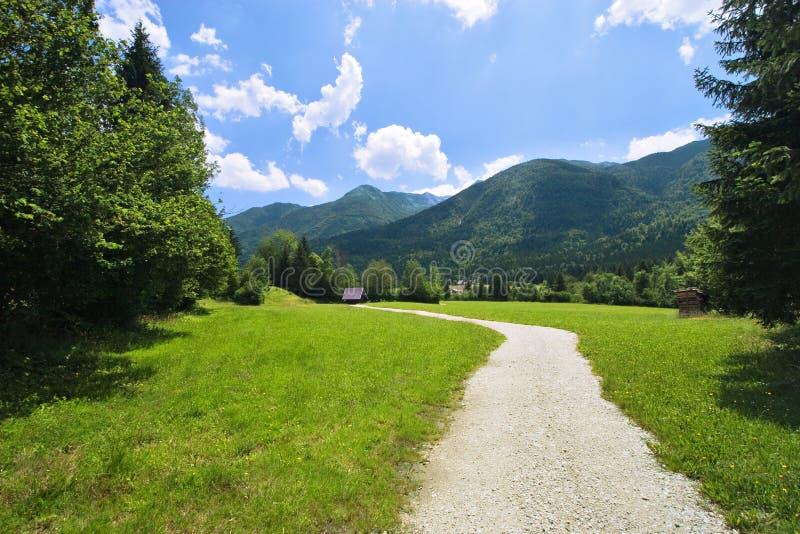 πράσινη κοιλάδα άνοιξη στοκ εικόνα με δικαίωμα ελεύθερης χρήσης