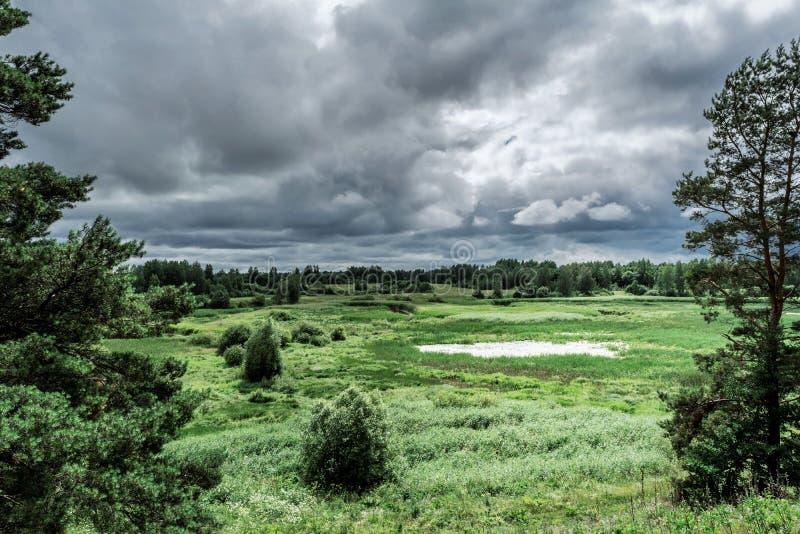 Πράσινη κοιλάδα με μια φυσική λίμνη, τους θάμνους και τα δέντρα, ουρανός βροχής, θερινή θαμπή θυελλώδης ημέρα στοκ εικόνα με δικαίωμα ελεύθερης χρήσης