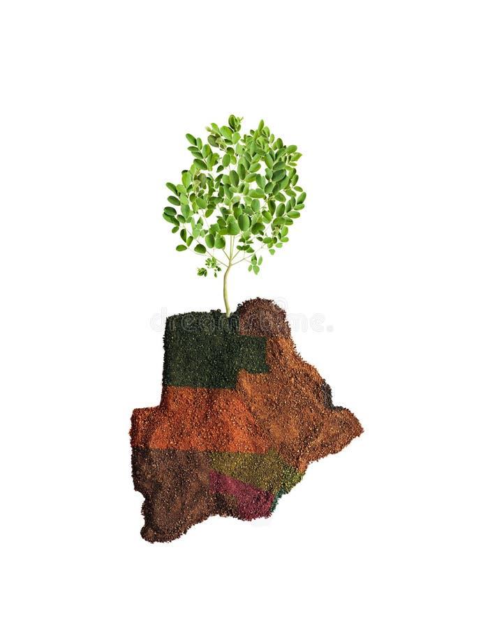 Πράσινη Μποτσουάνα με το δέντρο στοκ εικόνα με δικαίωμα ελεύθερης χρήσης