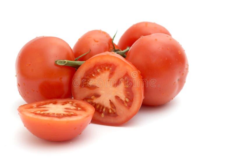 πράσινη ντομάτα κλάδων στοκ εικόνα με δικαίωμα ελεύθερης χρήσης