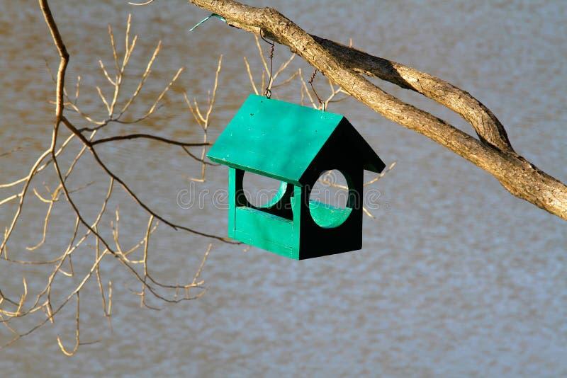 Πράσινη ξύλινη ένωση birdhouse στον κλάδο δέντρων στοκ φωτογραφίες
