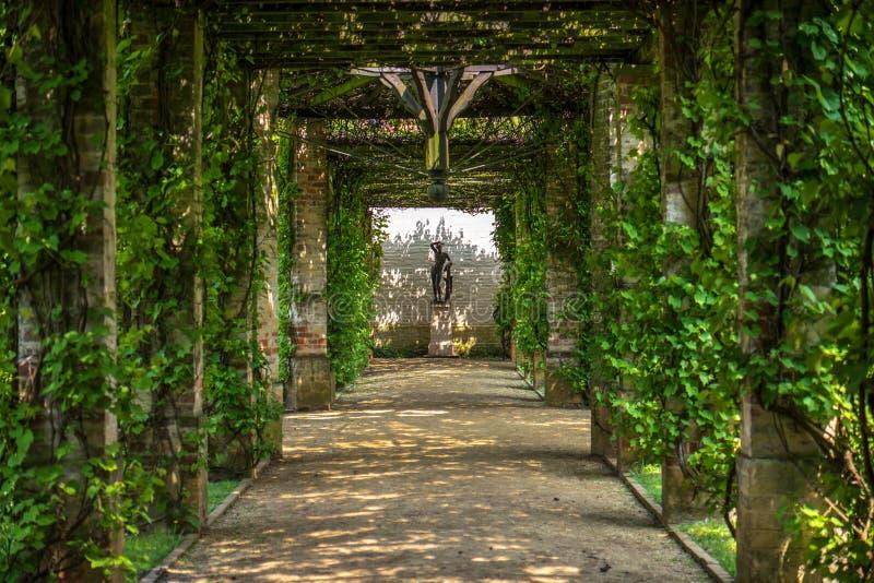 Πράσινη πέργκολα στοκ εικόνα με δικαίωμα ελεύθερης χρήσης