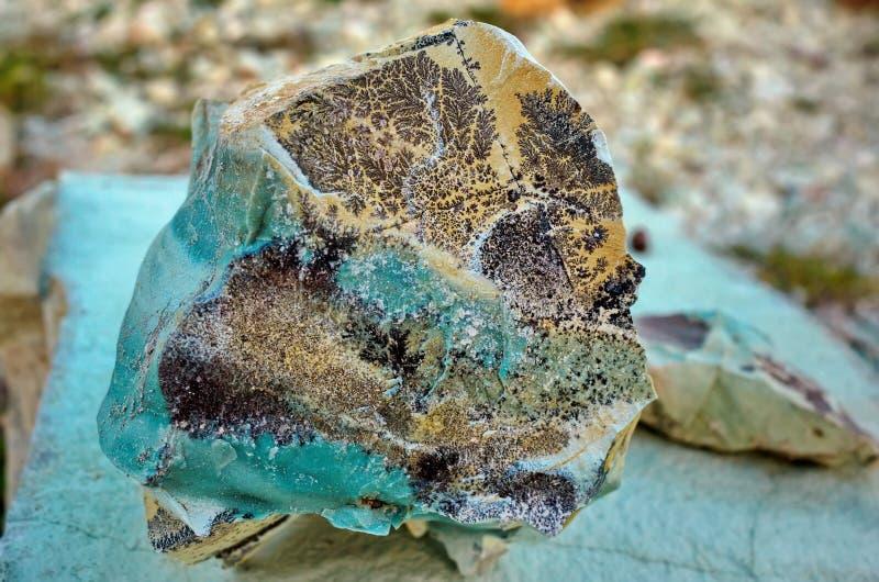 Πράσινη πέτρα με τα απολιθώματα εγκαταστάσεων στοκ εικόνες