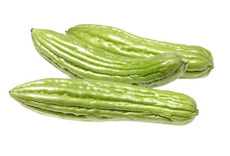 Πράσινη πικρή κολοκύθα στοκ εικόνες