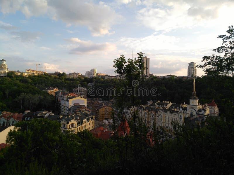 Πράσινη πολύβλαστη βλάστηση στο Κίεβο στοκ εικόνες