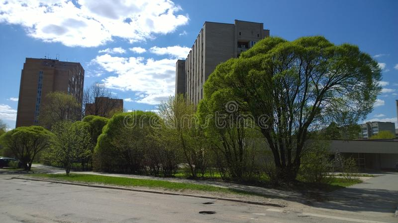 Πράσινη πόλη άνοιξη στοκ εικόνες με δικαίωμα ελεύθερης χρήσης