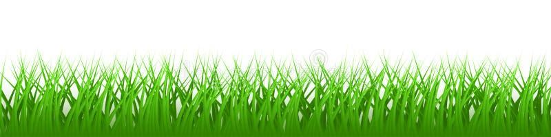 Πράσινη ρεαλιστική διανυσματική χλόη διανυσματική απεικόνιση