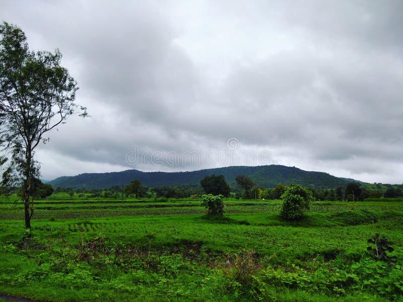 Πράσινη σκηνή εδάφους στο μουσώνα στοκ εικόνα με δικαίωμα ελεύθερης χρήσης