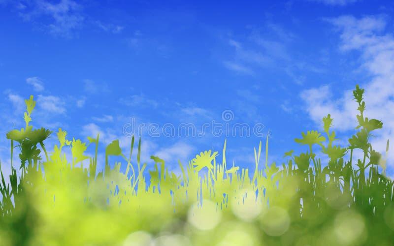 Πράσινη σκιαγραφία της χλόης και των άγριων συνόρων λουλουδιών στο μπλε ουρανό στοκ εικόνα με δικαίωμα ελεύθερης χρήσης