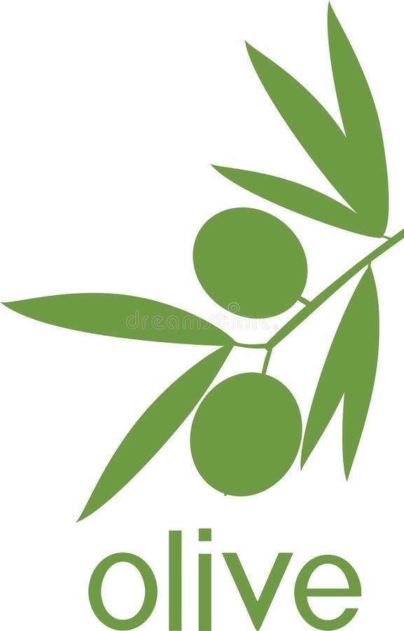 Πράσινη σκιαγραφία του κλάδου της ελιάς με τα φύλλα και τις ελιές απεικόνιση αποθεμάτων