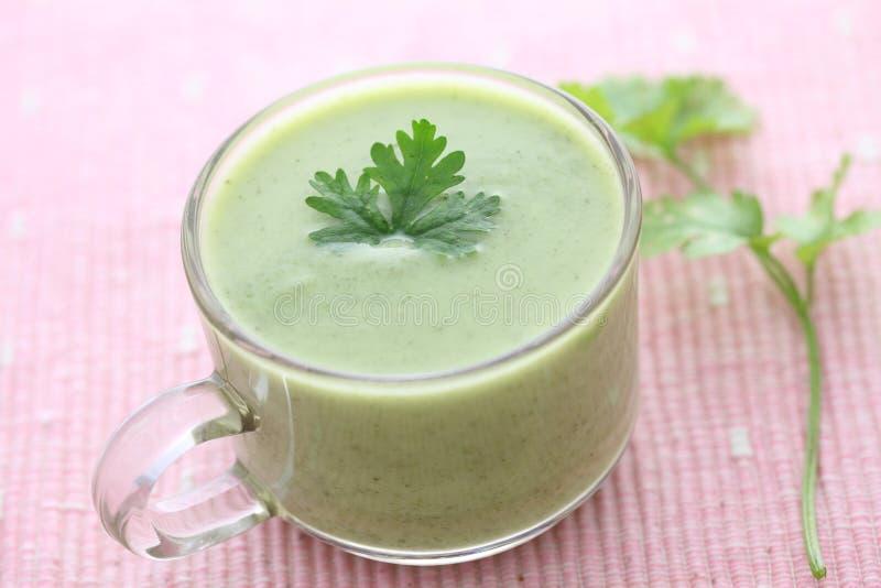 Πράσινη σούπα λαχανικών στοκ φωτογραφίες