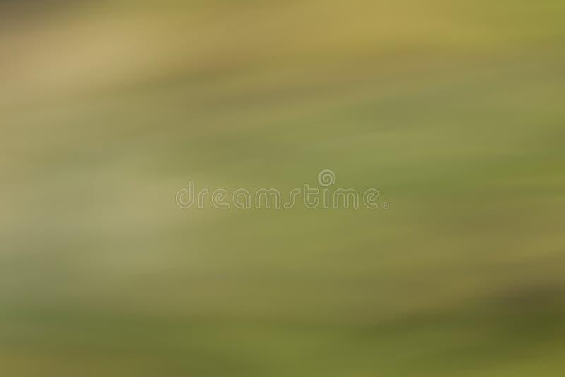 πράσινη στροφή ήλιων ακτίνων φύλλων πτήσης πουλιών ανασκόπησης φθινοπώρου στοκ εικόνες