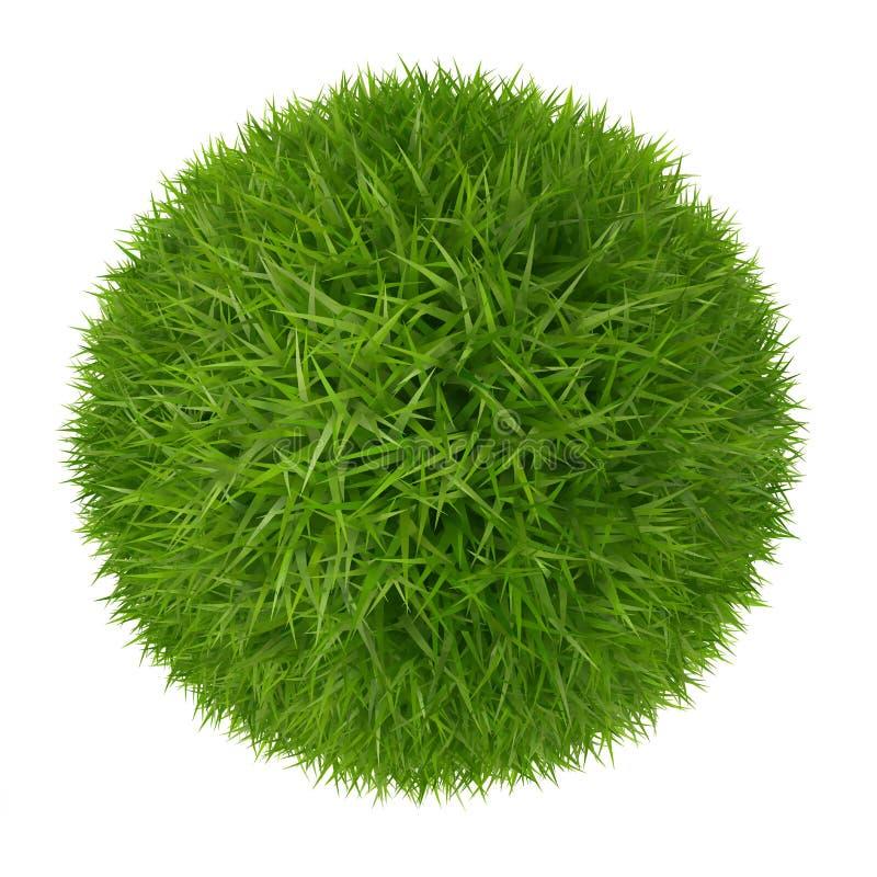 Πράσινη σφαίρα χλόης που απομονώνεται στο άσπρο υπόβαθρο απεικόνιση αποθεμάτων