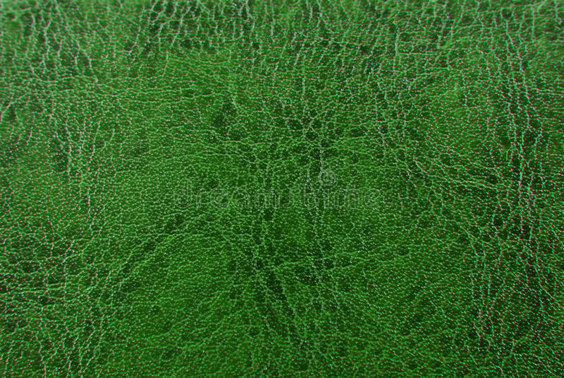 πράσινη σύσταση δέρματος στοκ εικόνες με δικαίωμα ελεύθερης χρήσης