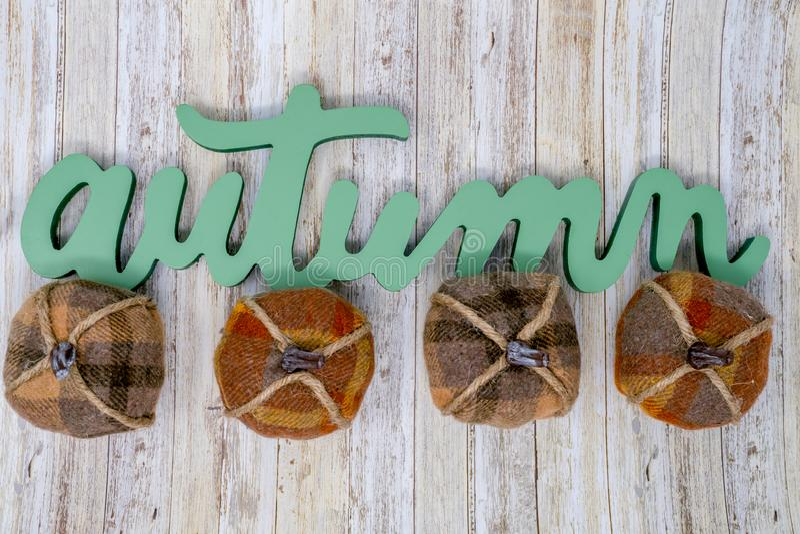 Πράσινη φράση κειμένων φθινοπώρου με τέσσερις διακοσμητικές κολοκύθες καρό στοκ εικόνες