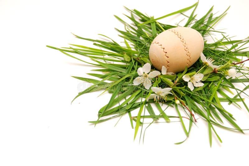 πράσινη φωλιά χλόης αυγών Πάσ στοκ φωτογραφία με δικαίωμα ελεύθερης χρήσης
