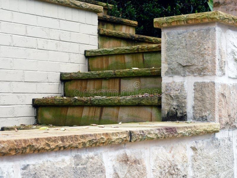 Πράσινη φόρμα στα βήματα σπιτιών στοκ εικόνες