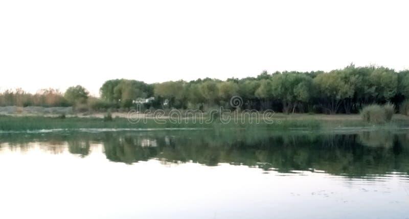πράσινη φύση στοκ φωτογραφία