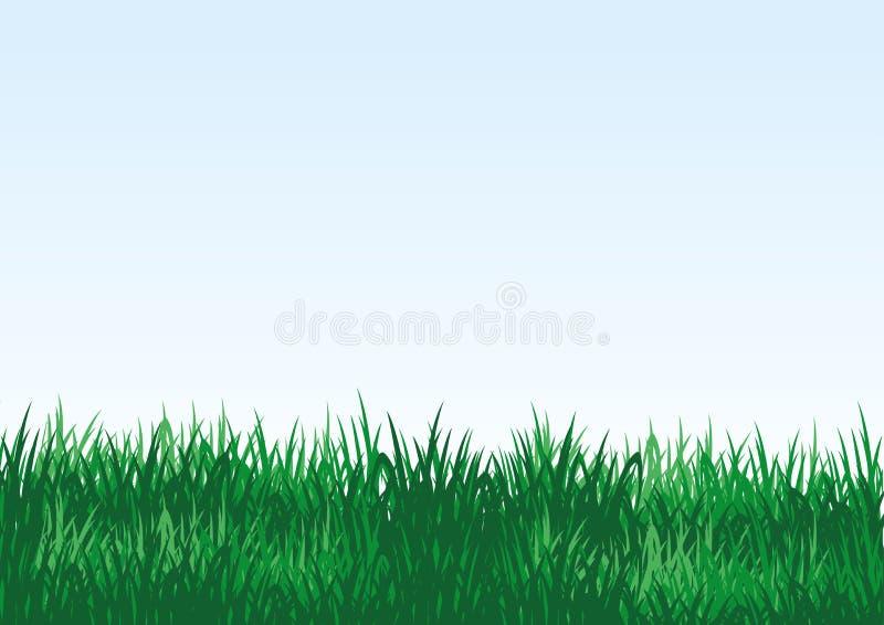 Πράσινη χλόη σε μια μπλε ανασκόπηση διανυσματική απεικόνιση